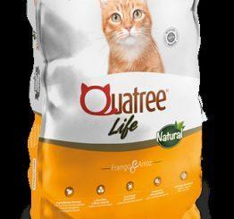 QUATREE LIFE GATO CASTRADO 10,1 KG
